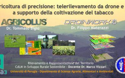 Tabacchicoltura di precisione – telerilevamento da drone e GIS