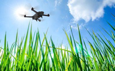 Nuovi servizi avanzati per l'agricoltura di precisione con drone